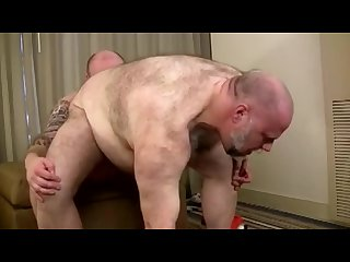 Wayne daniels gets his fat manhole plowed by bruiser bull