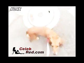 Japanese girls loves little dogs japanese