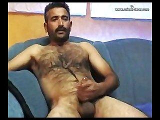 Orient bear verdat