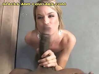 Cougar strips for black stud