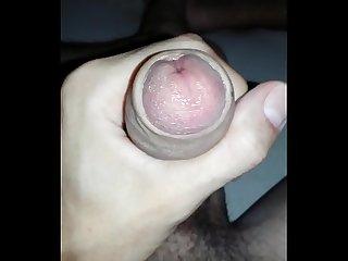 Tirando um leite