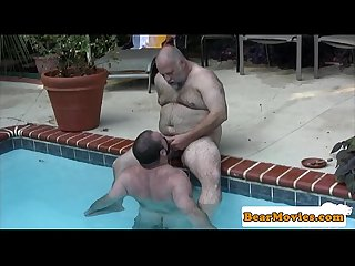 Polar bear dicksucked in the pool