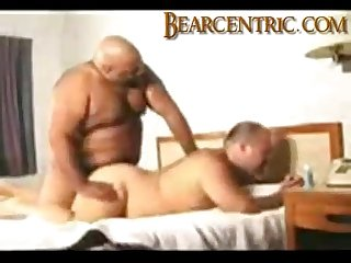 Black and white amateur bears sucking fucking and blowing a huge load