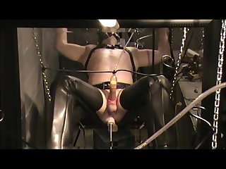 Bdsm loving guy cums 3x s screaming in 9 minutes