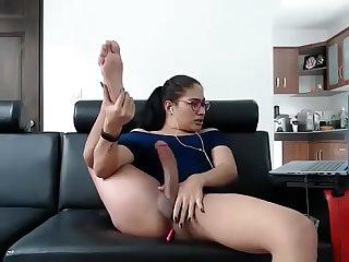 Skarleeth webcam 6