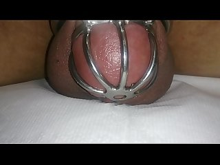 Cumming in chastity device with vibrating egg hand free cum shot cock cage cum