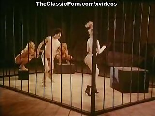 Jamie gillis sam grady chris anderson in classic sex video
